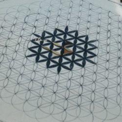 geometryflower of life_forweb